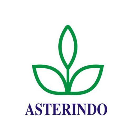 ASTERINDO